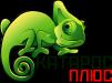 КАТАРОС плюс | Профессиональное уничтожение насекомых и грызунов